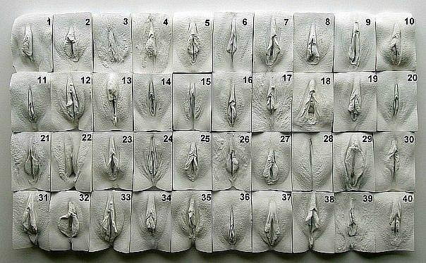 Крупный план женских писек 90 фото  Эротические фото